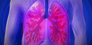 A graphic of lungs.