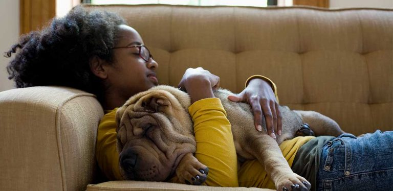 a woman taking a nap on the couch with her dog